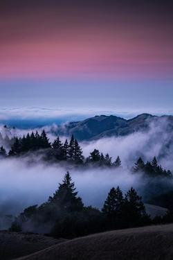 Gateway To Heaven, Beautiful Sunset and Fog at Mount Tamalpais, California by Vincent James