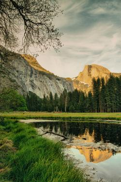 Half Dome Reflection at Cook's Meadow, Yosemite Valley by Vincent James