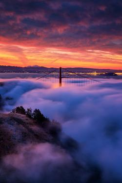 Holy Trinity, Low Fog, High Clouds and Sunrise Burn Golden Gate, San Francisco by Vincent James