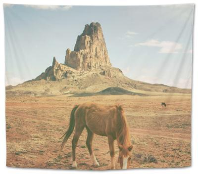 Horses at Mount Agathla, Monument Valley, Arizona by Vincent James