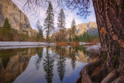 Inside the Valley, Yosemite by Vincent James