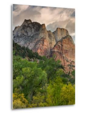 Inside Zion Canyon by Vincent James