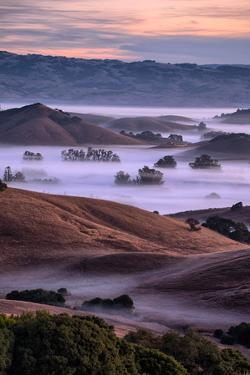 Magical Country Hills and Fog, Petaluma, Sonoma, Bay Area by Vincent James