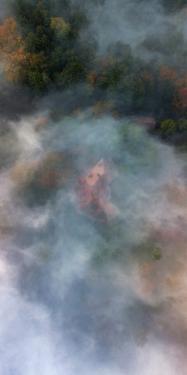 Misty Autumn Morning at Pittock Mansion, Portland, Oregon by Vincent James