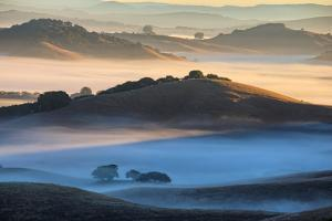 Misty Morning World and First Light, Petaluma California by Vincent James