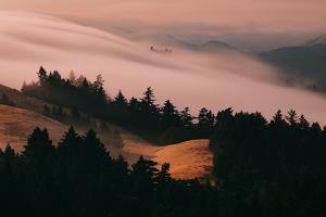 Moody Hills and Fog Flow, Mount Tamalpais, California by Vincent James
