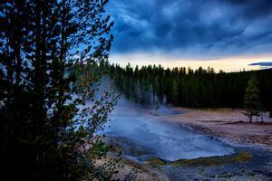 Morning Brew, Mood and Mist at Yellowstone National Park, Wyoming by Vincent James