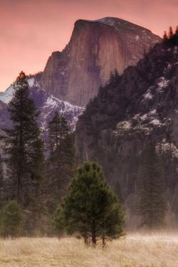 Morning Mist and Half Dome by Vincent James