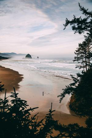 Morning Walk at Cannon Beach, Peaceful Oregon Coast by Vincent James