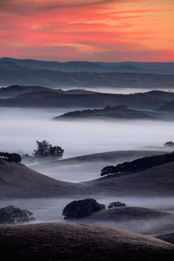 November Sunrise, Fog in the Petaluma Hills, Sonoma County by Vincent James