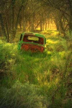 Old Pickup Truck in Woods, Kern County California by Vincent James