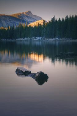 Peaceful Reflection at Tenaya Lake Yosemite National Park by Vincent James