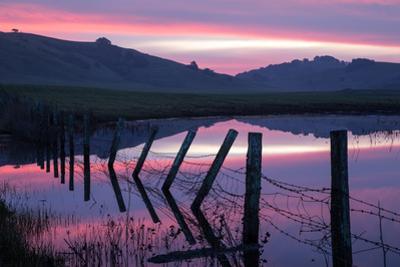 Pre Dawn Petaluma Roadside, Northern California by Vincent James