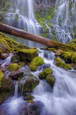 Scene at Majestic Lower Proxy Falls - Central Oregon by Vincent James