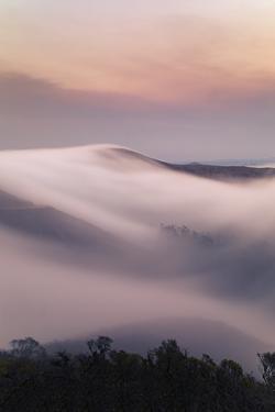 Smoky Fog Sweeps, Marin Headlands, Northern California by Vincent James