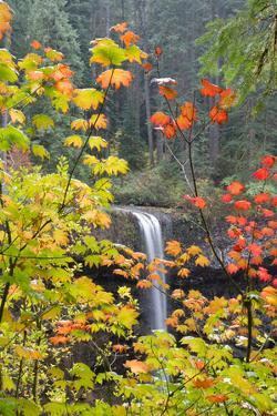 South Falls in Autumn Detail, Silver Falls State Park, Silverton, Oregon by Vincent James