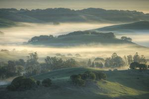 Spring Hills and Morning Fog, Petaluma, California by Vincent James