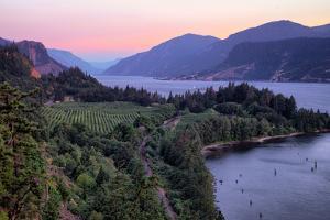 Spring Morning Landscape at Columbia River Gorge, Oregon by Vincent James