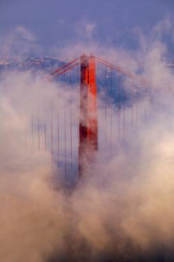 Steamy Gold North Tower,  Gate Bridge - Fog Zone - San Francisco by Vincent James