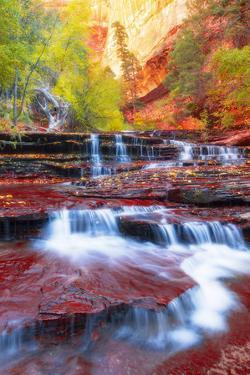 Subway Approach, Autumn Zion National Park, Natural Wonder, Southern Utah by Vincent James