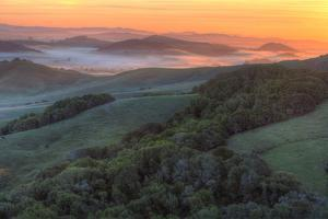 Sunrise Light and Green Hills, Sonoma County by Vincent James
