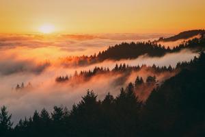 Sunset and Magical Fog Mount Tamalpais San Francisco by Vincent James