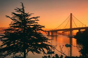Sweet Morning Light at Oakland Bay Bridge, East Bay by Vincent James