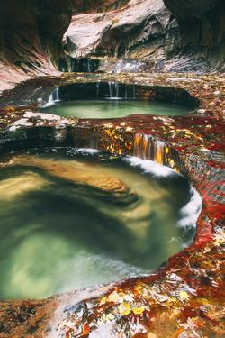The Magical Subway, Autumn Zion National Park, Natural Wonder, Southern Utah by Vincent James
