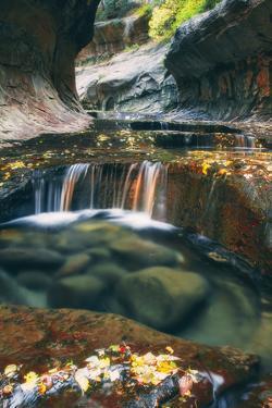 The Mystical Subway, Autumn Zion National Park, Natural Wonder, Southern Utah by Vincent James