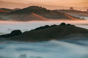 Warm Light and Cool Fog, Morning in Petaluma California by Vincent James