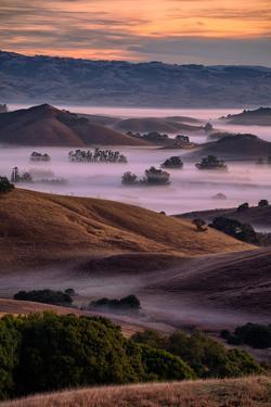 Warn Magic Morning, Petaluma Country, Sonoma County by Vincent James