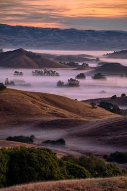 Warn Magic Morning, Petaluma Country, Sonoma County by Vincent James