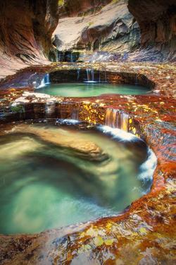 Within The Subway, Planet Earth Zion National Park, Utah by Vincent James