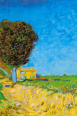 Vincent Van Gogh A Lane near Arles Plastic Sign