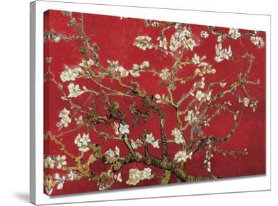 Almond Blossom (Red) by Vincent van Gogh