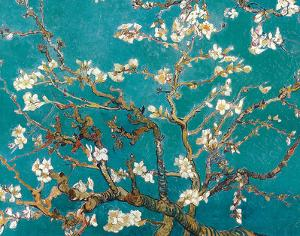 Almond Blossom by Vincent van Gogh