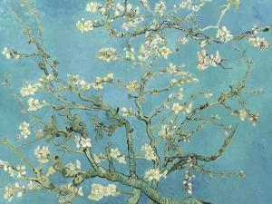 Almond Blossoms, 1890 by Vincent van Gogh