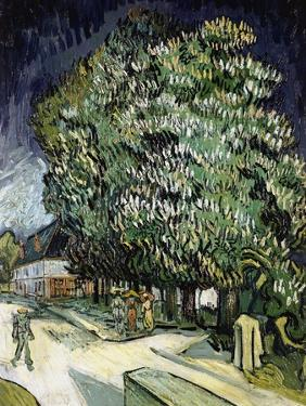 Chestnut Trees in Blossom, Auvers-Sur-Oise, 1890 by Vincent van Gogh