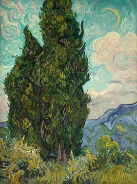 Cypresses I by Vincent van Gogh