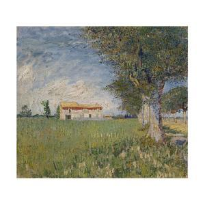 Farmhouse in a Wheat Field, 1888 by Vincent van Gogh
