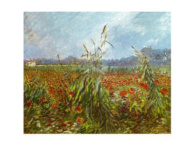 Field with poppies. Oil on canvas. by Vincent van Gogh