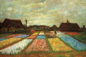 Flower Beds of Holland by Vincent van Gogh