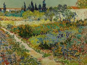 Garden at Arles, 1888 by Vincent van Gogh