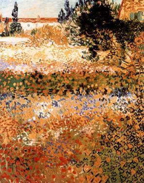 Garden in Arles Jardin a Arles by Vincent van Gogh