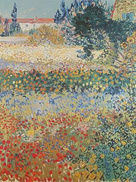 Garden in Bloom Arles, c.1888 by Vincent van Gogh