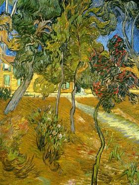 Garden of St. Paul's Hospital, 1889 by Vincent van Gogh