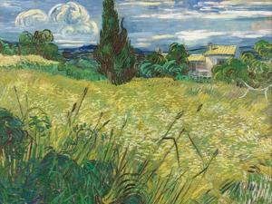 Green Wheat Field with Cypress by Vincent van Gogh
