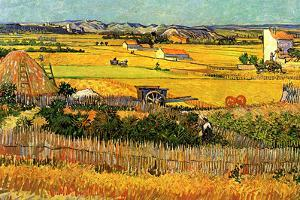 Vincent Van Gogh Harvest at La Crau with Montmajour in the Background Plastic Sign
