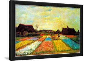 Vincent Van Gogh Holland Flower Bed Art Print Poster