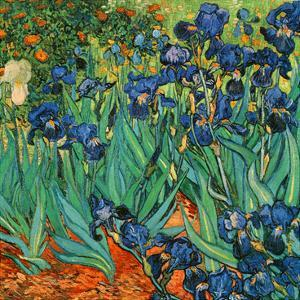 Iris (Détail) by Vincent van Gogh